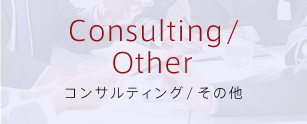 Consulting / Other コンサルティング/その他